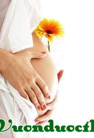mang thai và sinh con