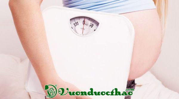 mang-thai-7-thang-tang-10-kg